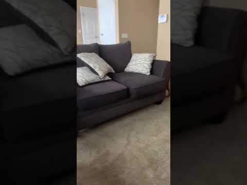 Пользователь Reddit научил собаку ложиться спать после выключения Xbox One
