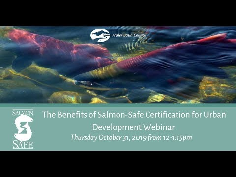 The Benefits Of Salmon Safe Certification For Urban Development