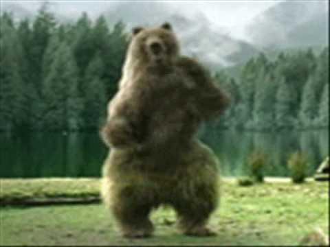 oso bailarín putas vi