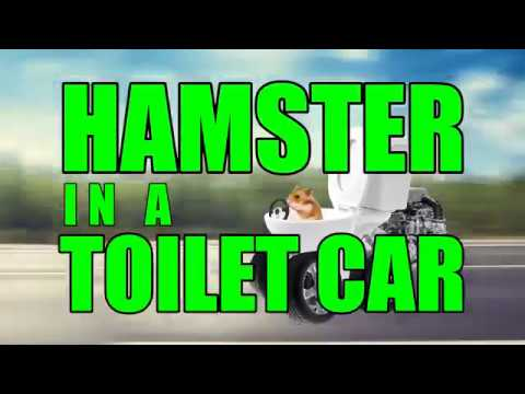 Hamster in a toilet car (Full song)