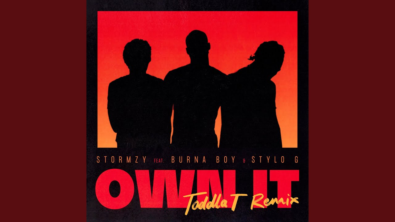 Own It (feat. Burna Boy & Stylo G) (Toddla T Remix)