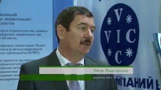 ГК ВИК на выставке Белгородагро(ГРУППА КОМПАНИЙ ВИК создана в 1990 году и на сегодняшний день занимает лидирующие позиции на российском рынк..., 2016-06-03T08:52:40.000Z)