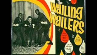 Bob Marley and the wailers   True Confession 1963