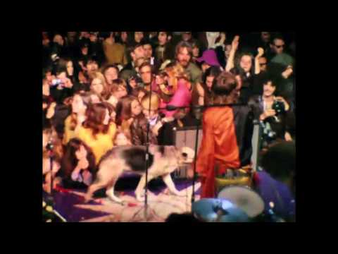The Rolling Stones - Gimme Shelter (Altamont Music Video)