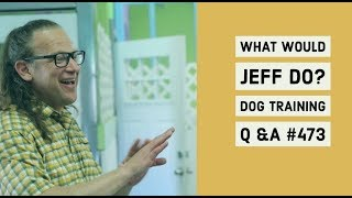 Dogs and Treadmills | Crating Dogs | What Would Jeff Do? Dog Training Q & A #473