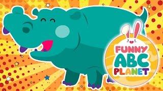 "ABC ALPHABET ""H"" HIPPO / HIPPOPOTAMUS"