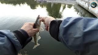 Рыболовный баттл в г. Светлый. Стритфишинг. Рыбалка в Калининграде