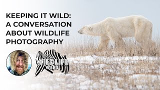 David Wilder: Keeping it Wild: A Conversation About Wildlife Photography | #BHWildlifeWeek