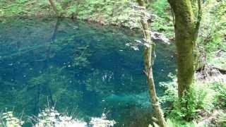 白神山地・十二湖の「青池」