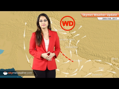 Weather Forecast for Feb 20: Snow in Kashmir, Himachal; Dry weather in Delhi