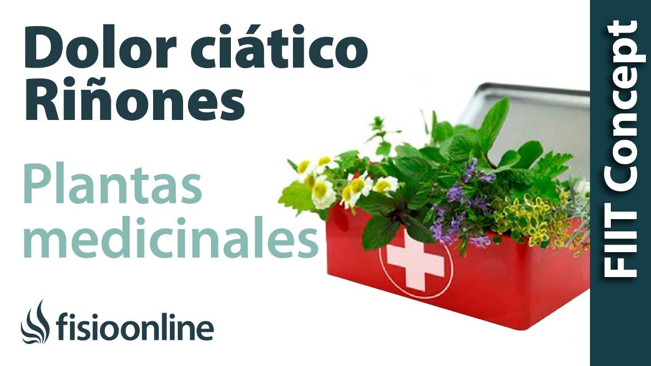 dolor de la ciatica remedios