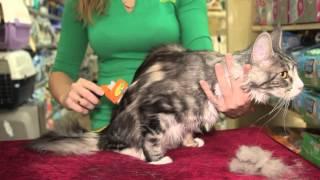 Все О Домашних Животных: Для Чего Нужен Фурминатор