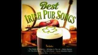 Whiskey in the jar - The Dublin city ramblers