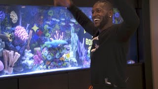 Which Is Better? ATM's Antonio Brown Fish Tank Or Their Custom Dance? thumbnail