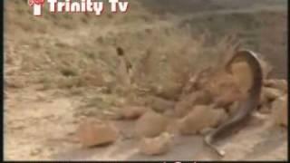 Masihi Geet -Haneri Te Toofan Sare