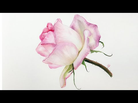 Realistic Rose in Watercolor Painting Tutorial - YouTube