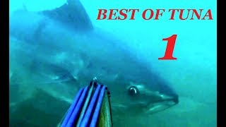 BEST TUNA SPEARFISHING VIDEOS Part 1 Top Shots And Big Fishes Video