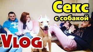 СЕКС С СОБАКОЙ ВЕЧЕРИНКА РУФЕРЫ ВПИСКА СЕКС / Stas Agapov VLOG