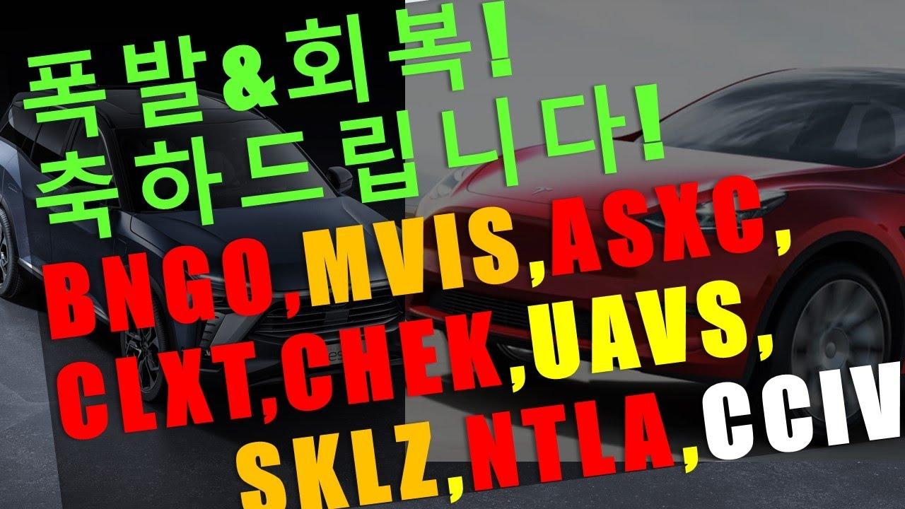 BNGO, ASXC, MVIS, CLXT, CHEK, UAVS, SKLZ, NTLA, PACB, CCIV, NIO, TSLA 폭발, 회복! 축하드립니다!