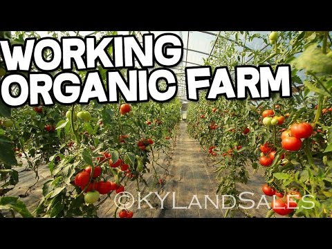Organic Farm Sustainable Farming Danville Kentucky homes and land
