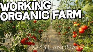 Organic Farm for sale Danville Kentucky homes and land