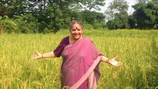 Vandana Shiva's message
