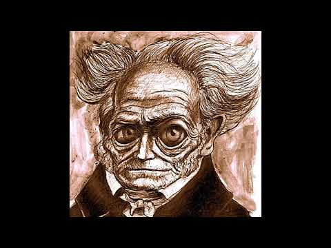 You Are Indestructible (by Schopenhauer)