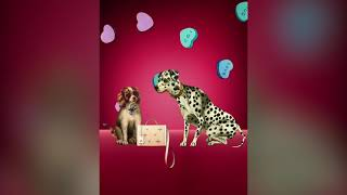 Mark Cross Valentine's Day Advert
