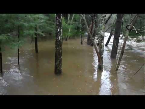 Daddy's Creek - Crossville, TN 704.MP4