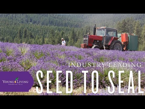 young-living's-seed-to-seal