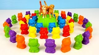 DOG and CAT sort colorful Teddy Bears - learning colors