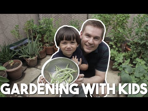 Teach your kids to grow veges in Manila today! (Urban Gardening Manila with AJ Urbano)