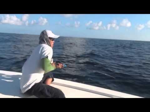 Offshore Venice Jigging AJs 100lb Grouper