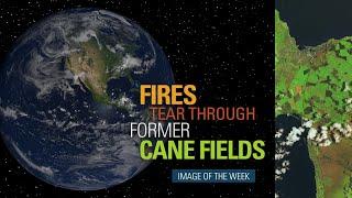 Fires Tear Through Former Cane Fields