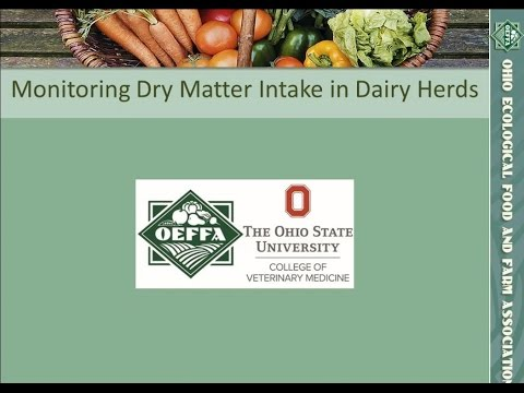 Managing Dry Matter Intake in Pre- and Post-Partum Dairy Cows