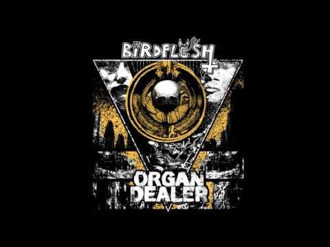 Birdflesh - Trapped In Forcepower (taken from the Split w/ Organ Dealer on HPGD)