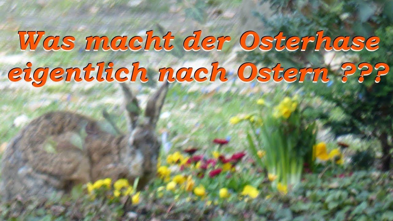 Ostern Vorbei