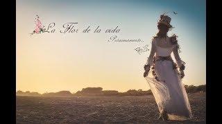 """La flor de la vida Videoclip/Presentación  ( La flor de la vida) """"Agrupación la soñadora"""""""