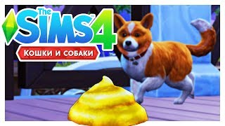 THE SIMS 4: КОШКИ И СОБАКИ #10 | КАКАЕМ ЗОЛОТОМ!