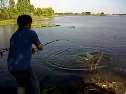 คลิ๊ปตกปลาชะโด สามแหวน 1
