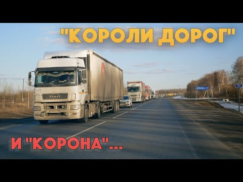 ДАЛЬНОБОЙЩИКИ про КАРАНТИН и ПАНИКУ в Европе, Америке и России. Советы водителям