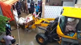 Gambar cover Cow dead in shot cercute