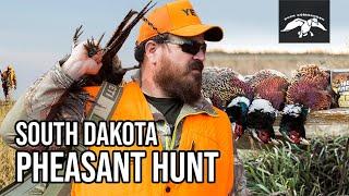 Justin Martin Pheasant Hunting in South Dakota