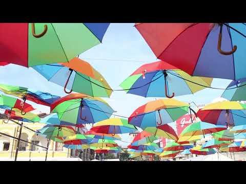 travel-|-1-day-trip-to-johor-bahru---malaysia