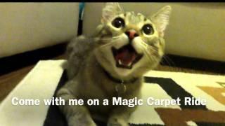 Waldo's World: Magic Carpet Ride Thumbnail
