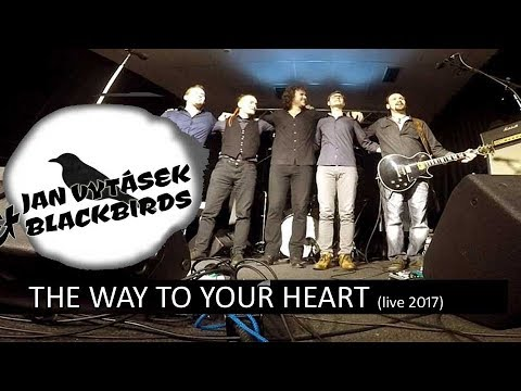 The Way To Your Heart (Soulsister cover) - Jan Vytásek & Blackbirds