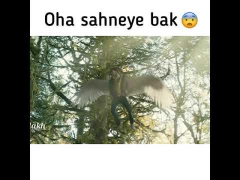 Whatsapp ucun maraqli statuslar 2019