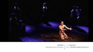 Patrizio Maria D'Artista - Narciso (Ovidio Metamorfosi il viaggio)