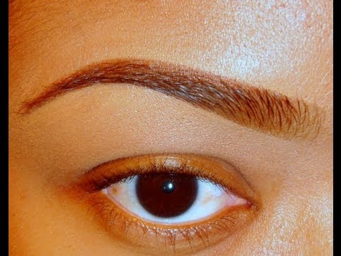 Eyebrow Routine: How To Arch and Fill In Eyebrows
