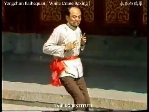 Yongchun White Crane Masters